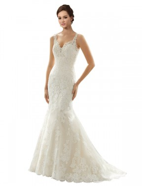 Shop Mermaid V-Neck Chapel Train Long Ivory & Champagne Lace & Tulle Paige Wedding Dress Geelong